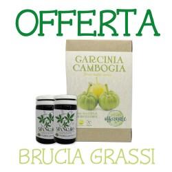 BRUCIA GRASSI:...